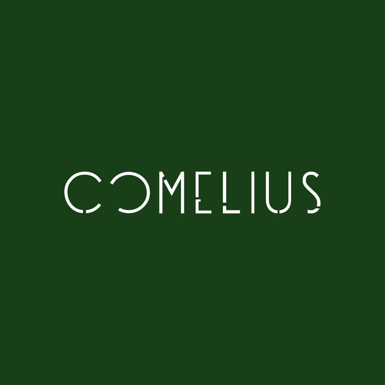 Comelius 2021 Landax